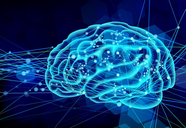 西洋医学の観点から刺激が脳に作用しているイメージ